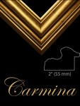 2  GOLD FRAME REVERSE SHAPED  CARMINA