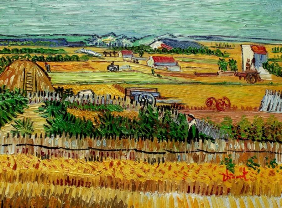Vincent van gogh harvest landscape 12x16 oil painting for Artworks landscape ltd